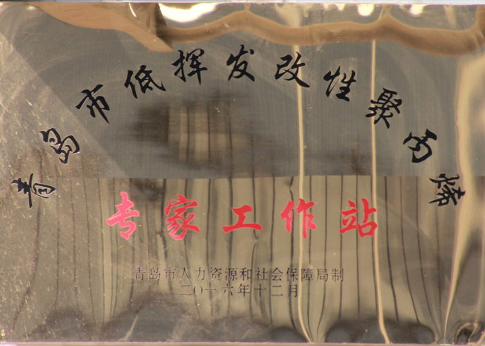青岛市低挥发改性聚丙烯专家工作站_看图王