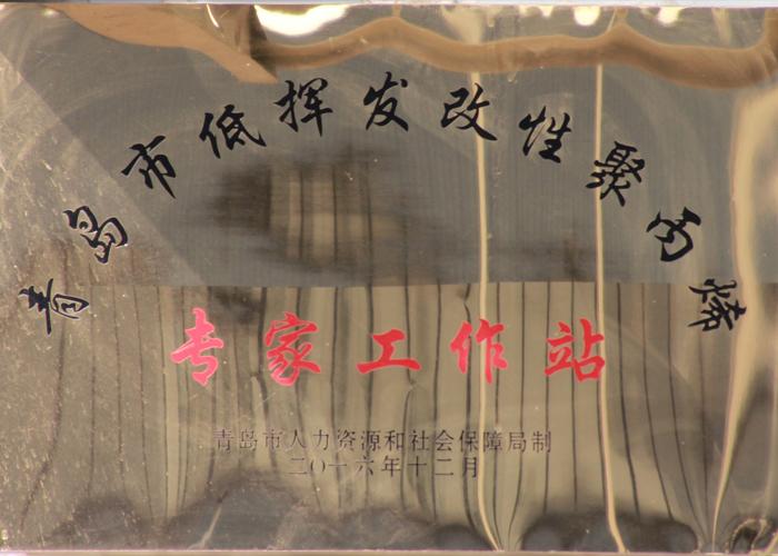 青岛市低挥发改性聚丙烯专家工作站